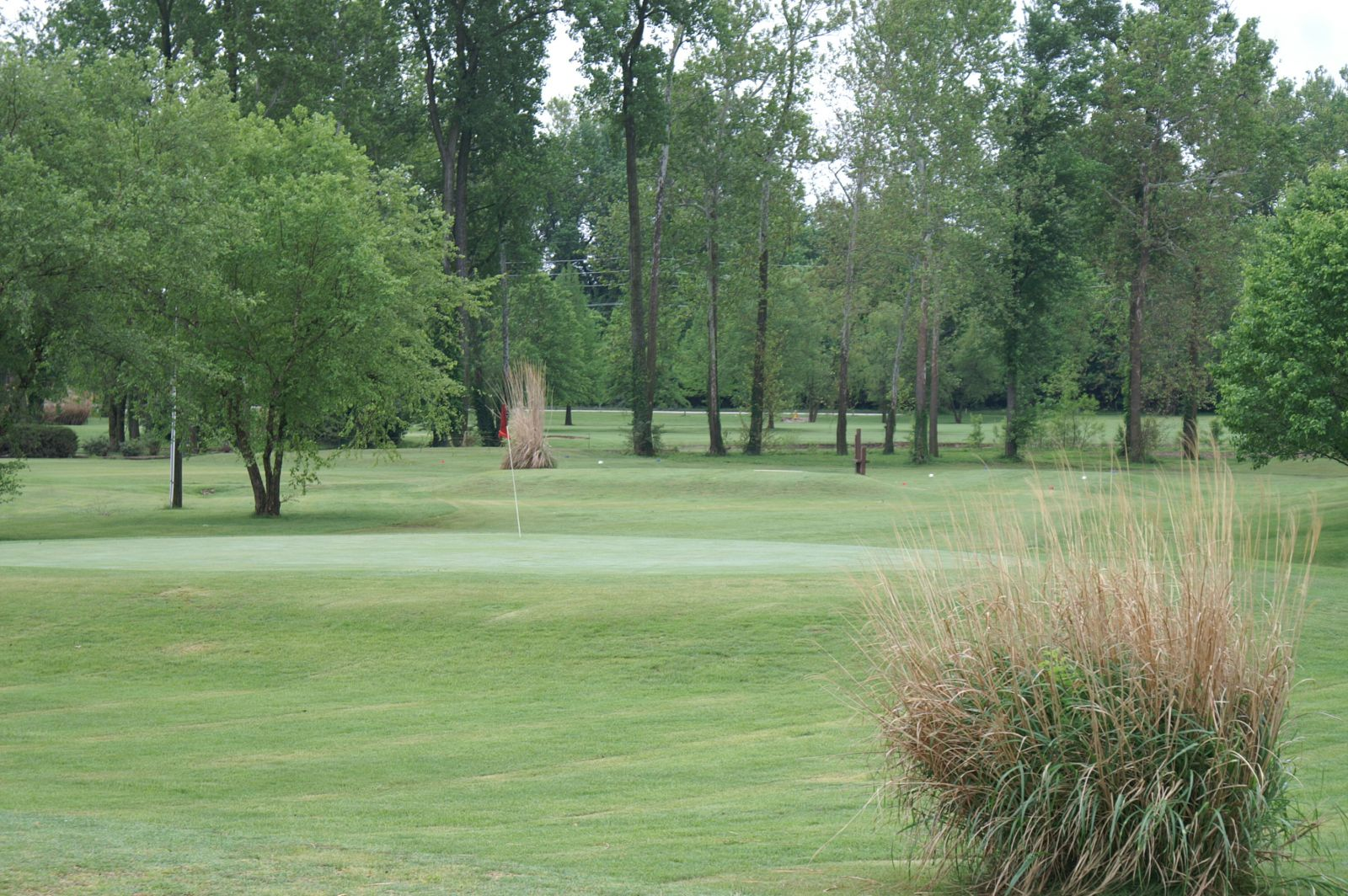 A closeup of the green for one of the holes on the par 3, 9-hole course at the Family Golf & Learning Center in St. Louis